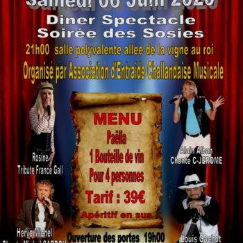 Concert à Commequiers le 06 juin 2020 - Sosies de C jerome France Gall Michel Sardou